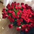 Del perché le rose vanno a dozzine.🌹🌹🌹🌹